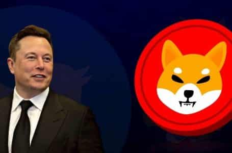 Shiba Inu Is on the Rise After a Tweet From Elon Musk